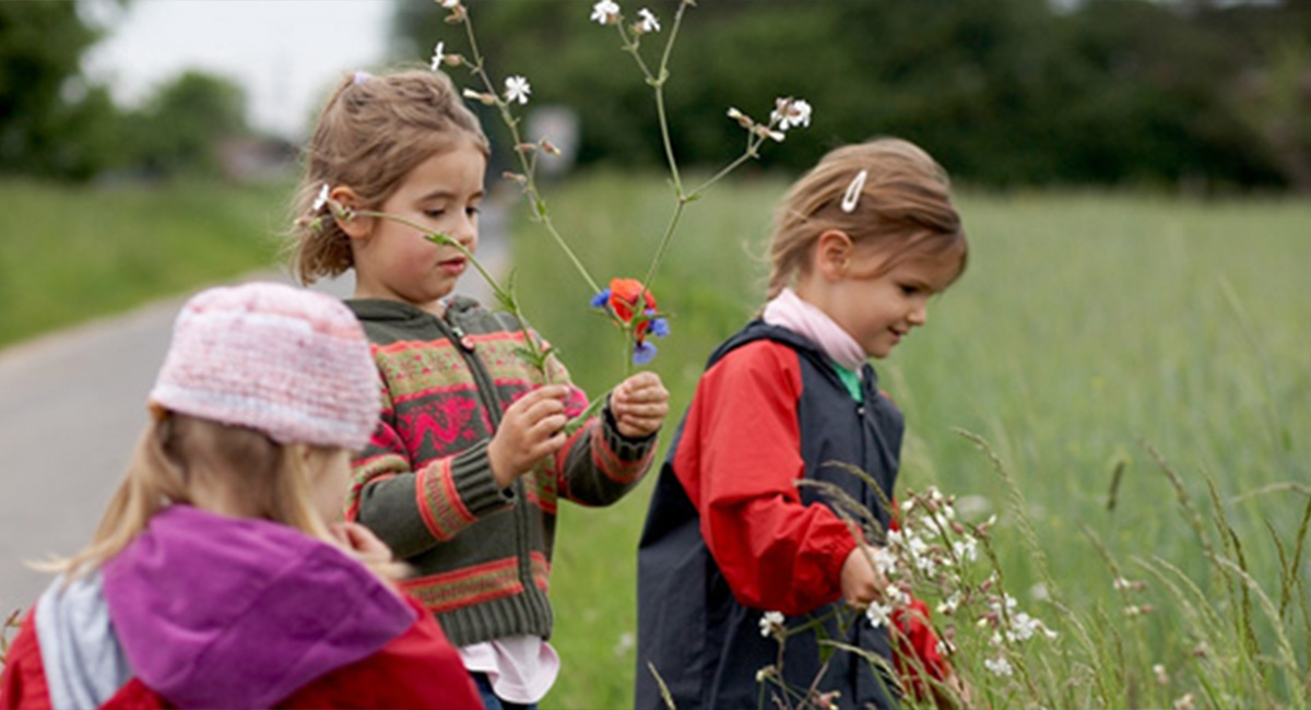 Kinder pflücken Blumen in der Natur